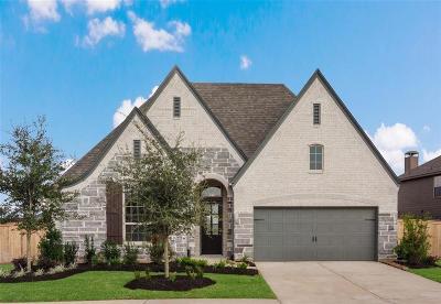 Fulshear Single Family Home For Sale: 30606 Morning Dove