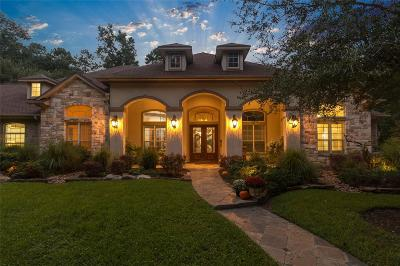 Magnolia Single Family Home For Sale: 10 Eagles Wing