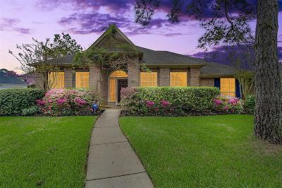 Katy Single Family Home For Sale: 20403 Chelsea Park Court