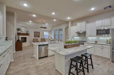 Montgomery Single Family Home For Sale: 341 Capriccio Lane