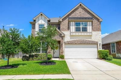 Single Family Home For Sale: 5318 Silver Ledge Drive