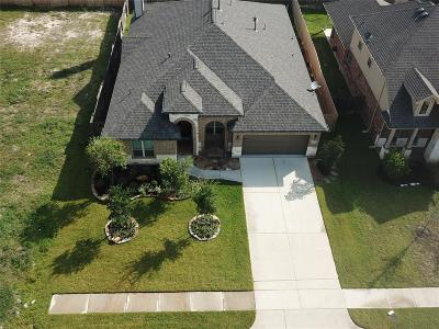 Tomball Single Family Home For Sale: 20814 Mystical Legend Drive