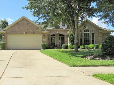 League City Single Family Home For Sale: 6101 Windsor Chase Lane