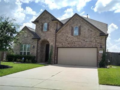 Cypress Single Family Home For Sale: 19903 Virginia Falls Lane