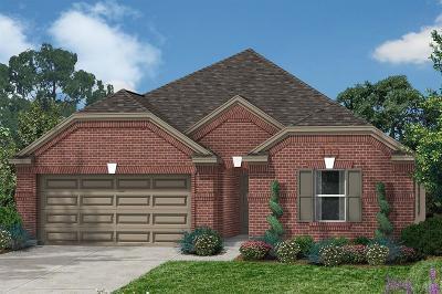 Katy Single Family Home For Sale: 1419 Buffalo Woods Court