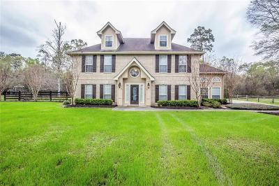Dayton Single Family Home For Sale: 31 Enchanted Lane