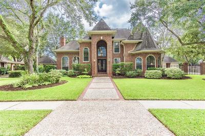Houston Single Family Home For Sale: 15722 Sylvan Lake Drive