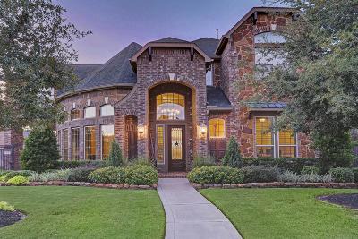 Katy Single Family Home For Sale: 10107 Springfield Ridge Drive