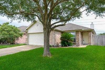 Single Family Home For Sale: 20227 Sandwith Drive