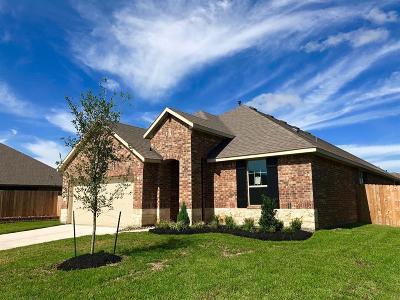 Houston Single Family Home For Sale: 8319 Erasmus Landing Court