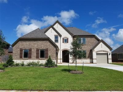 League City Single Family Home For Sale: 1609 Twin Knolls Lane