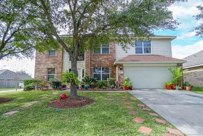 Katy Single Family Home For Sale: 3803 Willow Stone Court