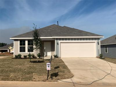 Single Family Home For Sale: 40215 S Hill Pass