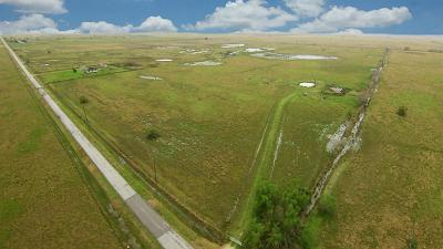 Fort Bend County Country Home/Acreage For Sale: Brumbelow Road