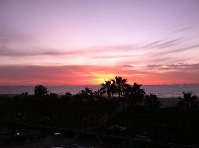 Galveston Mid/High-Rise For Sale: 1401 E Beach Drive #215