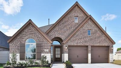 Manvel Single Family Home For Sale: 2019 Blackhawk Ridge Lane