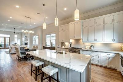 Houston Single Family Home For Sale: 208b Aurora Street