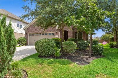 Tomball Single Family Home For Sale: 35 Tealight Place