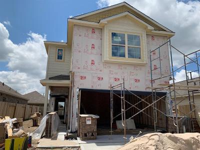Houston Single Family Home For Sale: 16526 Veneta Court