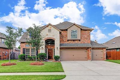 Tomball Single Family Home For Sale: 22822 Dale River Road