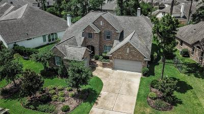 The Woodlands Single Family Home For Sale: 38 W Canyon Wren Circle