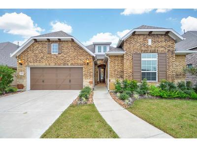 Manvel Single Family Home For Sale: 2606 Redbud Trail Lane