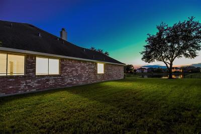 Houston Single Family Home For Sale: 9919 Pine Flats Drive
