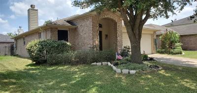 Katy Single Family Home For Sale: 6406 Hayman Drive