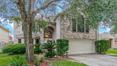 Sugar Land Single Family Home For Sale: 3209 Stratford Manor Drive