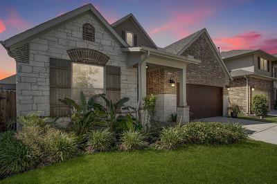 League City Single Family Home For Sale: 4802 Lorca Lane