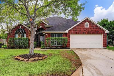 Pearland Single Family Home For Sale: 542 Chickory Field Lane
