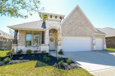 Harris County Single Family Home For Sale: 23415 Tirino Shores Drive