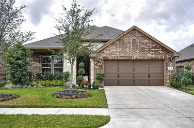 Cypress Single Family Home For Sale: 9535 Knox Prairie Court