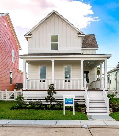 Galveston Single Family Home For Sale: 5 Duval Street