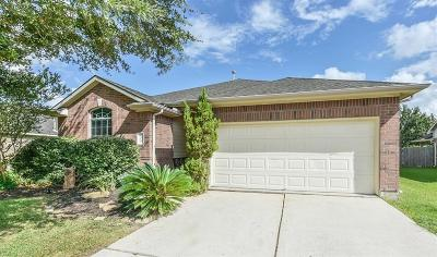 Pearland Single Family Home For Sale: 7313 Newport Lane