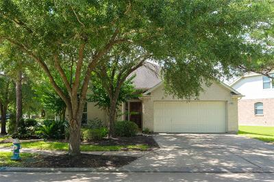 Houston Single Family Home For Sale: 10542 Oleander Point Drive