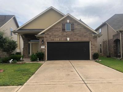 Houston Single Family Home For Sale: 10110 Blue Point Juniper Drive
