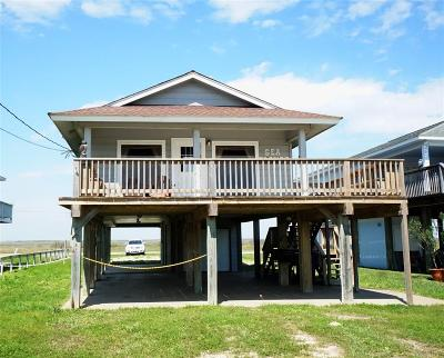 Surfside Beach Single Family Home For Sale: 2623 Swan Court