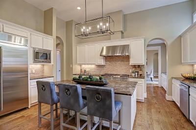 Houston Single Family Home For Sale: 3715 Drummond Street