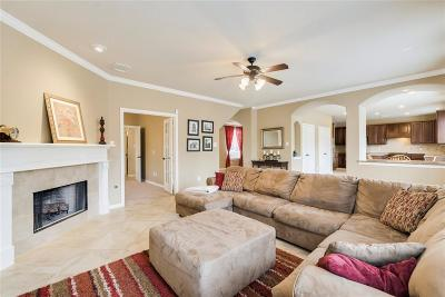 Katy Single Family Home For Sale: 25610 Tower Side Lane