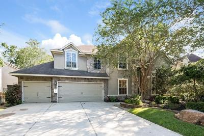 The Woodlands Single Family Home For Sale: 30 S Altwood Circle