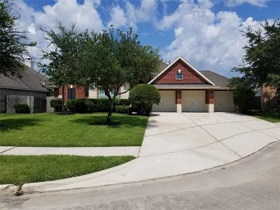 Summerwood Single Family Home For Sale: 13406 Popes Creek Lane