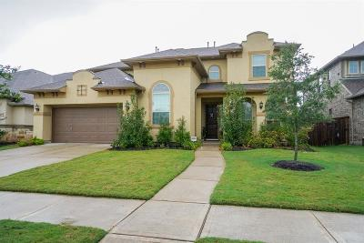Sugar Land Single Family Home For Sale: 5514 Oban Terrace Lane