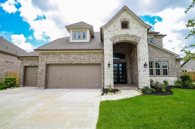 Katy Single Family Home For Sale: 28007 Crosswater Lane