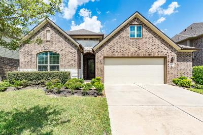 Pearland Single Family Home For Sale: 12503 Floral Park Lane Lane