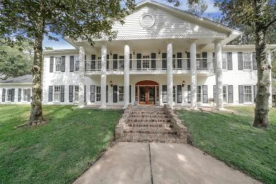 Friendswood Single Family Home For Sale: 403 Charleston Street