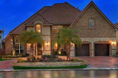 Houston Single Family Home For Sale: 9606 Stonecross Bend Drive