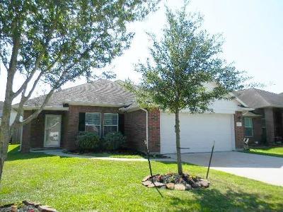 Dickinson Single Family Home For Sale: 6719 River Ridge Lane
