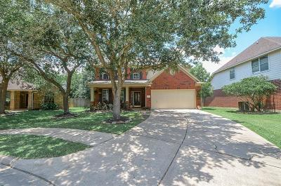 Sugar Land Single Family Home For Sale: 511 Deer Hollow Drive