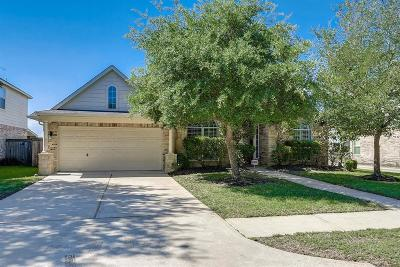 Houston Single Family Home For Sale: 15723 Sweeney Park Lane